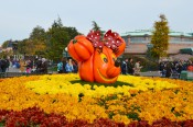 DisneylandParis241015 019