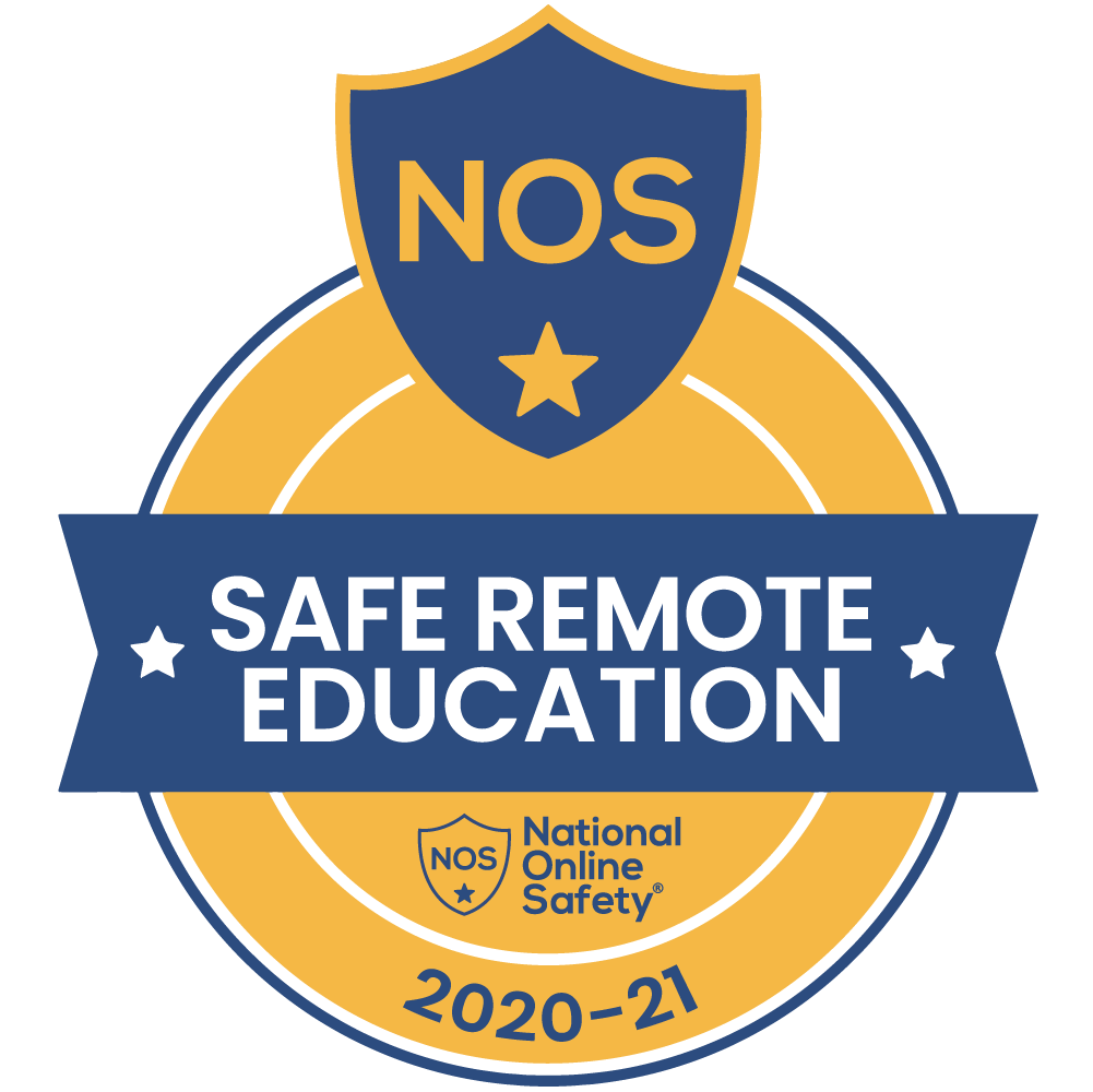 Remote Education 2020 21